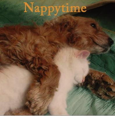 NappyTime Mix